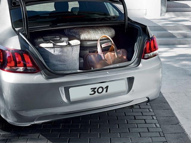 Baul-Peugeot-Argentina-301