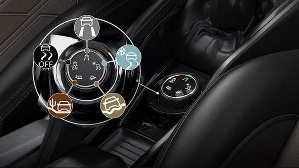 Grip-Control-Peugeot-Argentina-2008